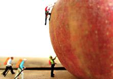 Apfel-Besteiger