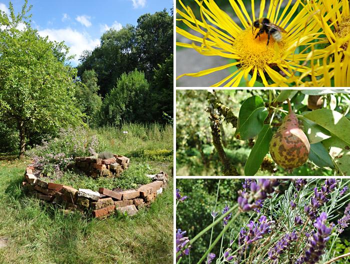 Ökologiestation - im Garten für Bienen, Kräuter und Obst
