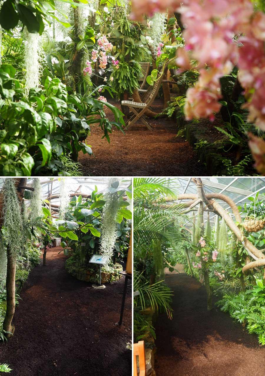 Muckeligkeit der etwas anderen Art: Im Tropenhaus der botanika herrschen rund 25 Grad und höchste Luftfeuchtigkeit. Hier lässt sich auch in der kälteren Jahreszeit die Gemütlichkeit der Wärme erfahren. Garantiert gut fürs Gemüt - daher kommt wohl auch der Begriff, oder?!?