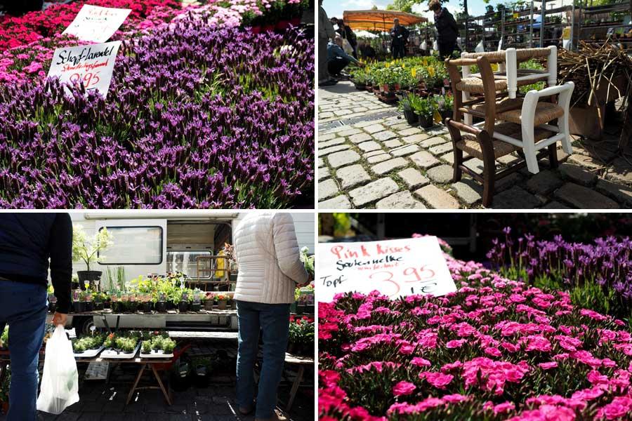 Ganze Blumenteppiche bedecken an den Ständen oft den Boden. Auch themenverwandte Utensilien findet man auf dem Lenzmarkt.