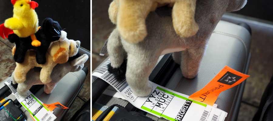 MUC für München, aber wofür steht YYZ? Die Mitarbeiter in der Gepäckschleuse kennen die Flughafen-Codes wahrscheinlich alle.