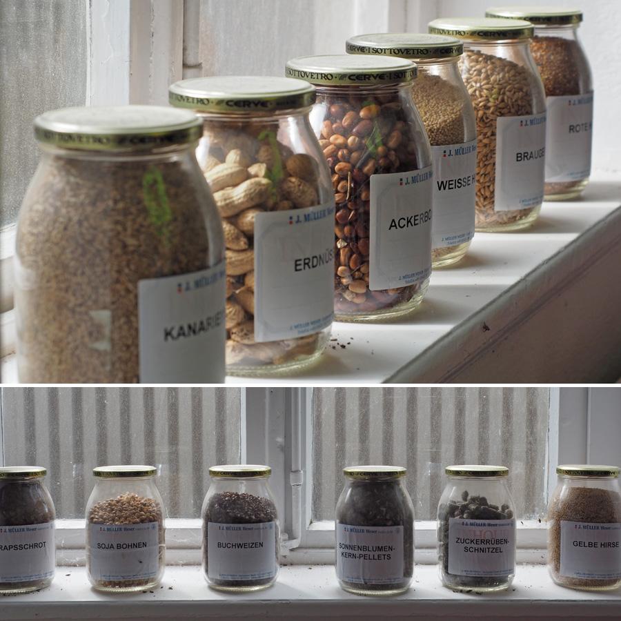 Von Soja bis Erdnuss - in den Silos und Zellen der GVA lagert Getreide von Kunden aus aller Welt.