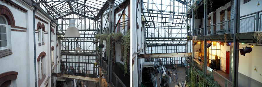 Nach und nach entstand das Glashaus im Hinterhof.